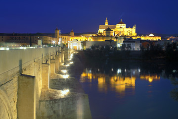 Cathedral Mezquita and Roman bridge at night, Guadalquivir river