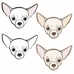 Vector set of  chihuahua's face. Hand-drawn vector illustration.