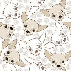 Vector seamless pattern with chihuahua-dog and traces.