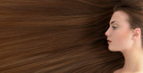 Brown hair. Beautiful young woman with  long healthy hair. - 81093024