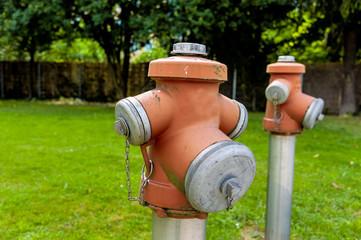 Hydranten auf einer Wiese