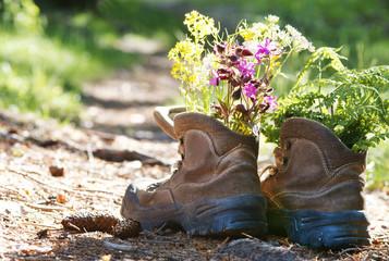 Wanderschuhe mit Blumen auf Waldweg