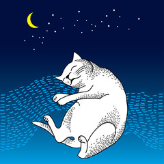 Funny sleeping cat. Series of comic cats