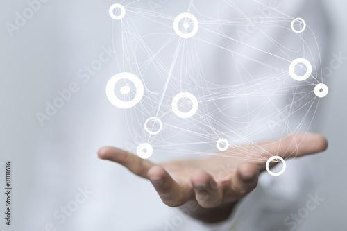 network - 81111616