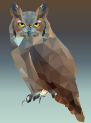 Owl Portrait Low Poly