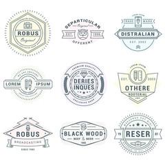 Set of Hipster Vintage Logotypes, Badges for Your Business