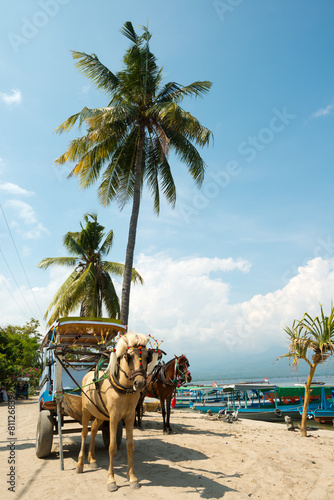 Foto op Plexiglas Indonesië Horse and Cart on Gili Air, West Nusa Tenggara, Indonesia