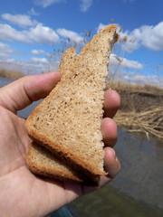 Два кусочка хлеба в мужской руке на фоне синего неба и водоема