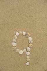 Klein-Buchstabe Q aus Schneckenhäuschen