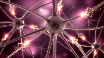 Nerve Cell. 3D. Neurons