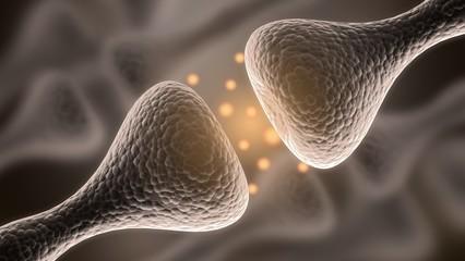 Nerve Cell. 3D. Receptor