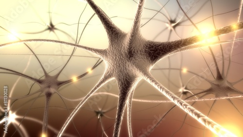 Brain. 3D. Neurons