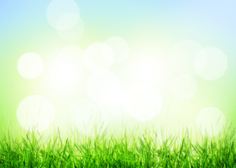 Summer background with grass and sunny bokeh