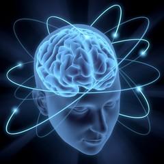 Brain. 3D. Vivid Brain