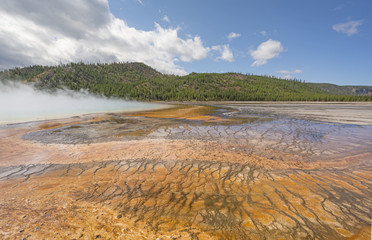 Colorful Pools in a Geothermal Basin