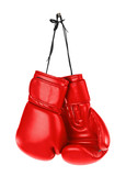 Hanging boxing gloves - 81133641