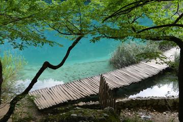 Walkway in Plitvice Lakes National Park, Croatia