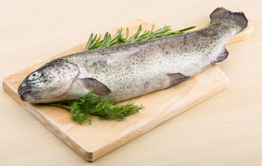 Raw fresh trout