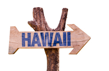 Hawaii sign isolated on white background
