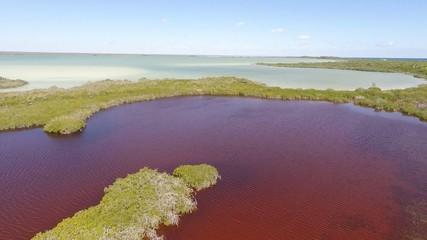 laguna roja manglar