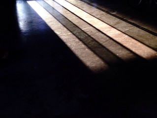 Sunshine and shadow on the floor