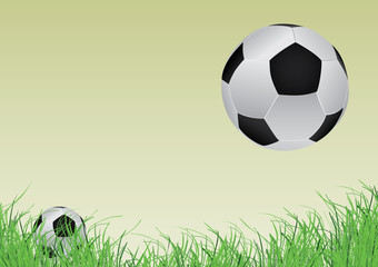two soccer ball and grass