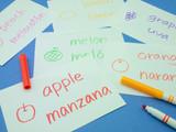 Fototapety Making Language Flash Cards; Spanish