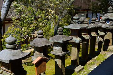 Kasuga Taisha Shrine, Nara, Japan