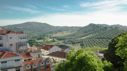 Vineyards on the Hills of Portugal with nice houses near