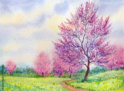 akwarela-wiosne-krajobraz-kwitnace-drzewo-w-af