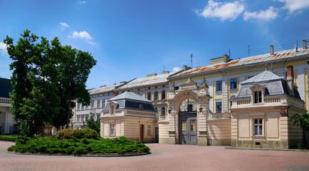 Potocki Palace in Lviv, Ukrainian. Currently - Lviv National Art