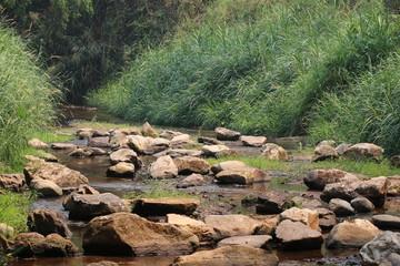 Rocks in the stream.