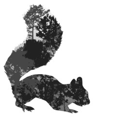gray squirrel silhouette from trees on white