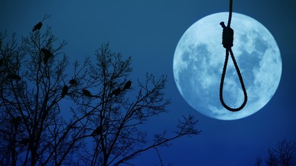 Hanging noose with the moon in the background.