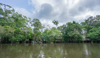 Amazon forest and wooden houses built for anaconda film