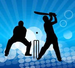 cricket - 15