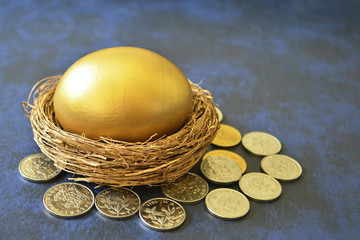 A golden egg in nest surrounded by coins