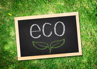 Top view of eco word with Chalk writing on blackboard on green g