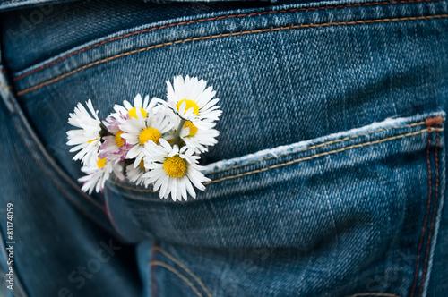 Plexiglas Madeliefjes pâquerette dans la poche arrière d'un jean