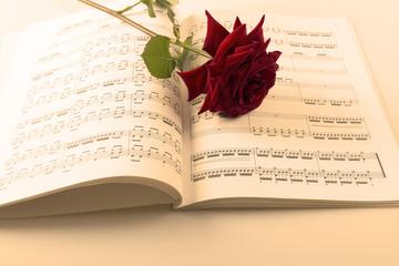 Partition et rose 2