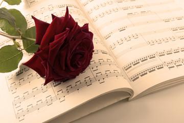 Partition et rose