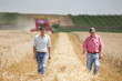 Agriculture partners on wheat harvest - 81184023