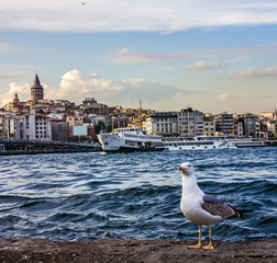 ISTANBUL, TURKEY - Bosporus seafront, Istanbul, Turkey