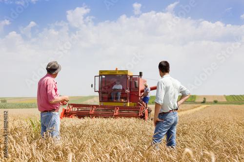 Business partners on wheat field - 81184032