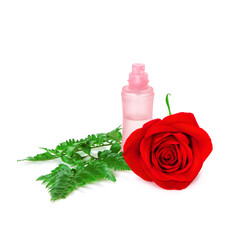 Perfume bottle with fresh red rose and fern leaves