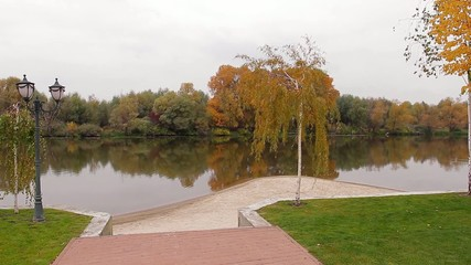 Beautiful autumn park. Golden birch grove near the pond.