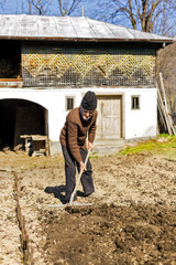 Old farmer with rake working