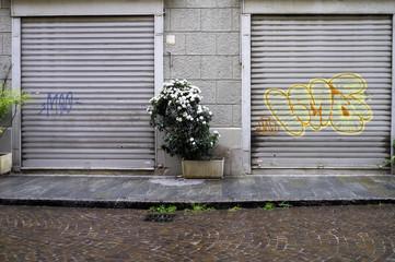 Closed shop windows. Color image