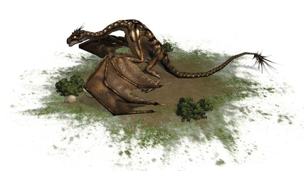 fantasy Dragon Creature - separated on white background