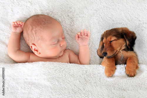 Sleeping baby and puppy - 81199831